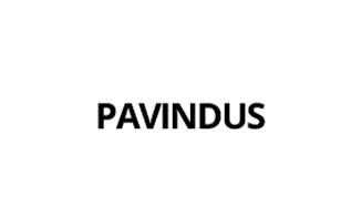 Pavindus